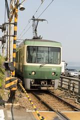 Train_PBN4423 (pbnewton) Tags: bridge japan tokyo rainbow buddha great hasetemple yuigahamabeach kotokuintemple enoshimaisland odaibaisland nikond4 rhetoricru enodentrain pbnewton kamakurahighschool sasukeshrine kamakuracoast