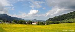 La Vallée Verte (joménager) Tags: alpes chablais du hautesavoie léman nikon p330 passion paysage rhônealpes