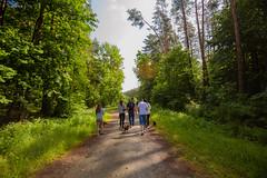 Fotograf_Kwidzyn20150614_09-50-20_spacer_z_psem_na_orientacje_fot_Pawel_Wolochowicz_DM39981