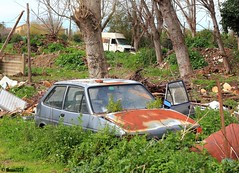 rural decay (Alessio3373) Tags: abandoned rust neglected rusty rusted scrapyard scrap abandonment ruraldecay decayed corroded rustycars unloved unused rustycrusty scrapped abandonedcars autoshite scrappedcars forgottencars autoabbandonate