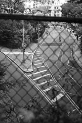 XE1-10-10-14-245 (a.cadore) Tags: nyc newyorkcity blackandwhite bw zeiss centralpark uptown ues fujifilm carlzeiss hff transverse xe1 zeissbiogon35mmf2 biogont235 fujifilmxe1