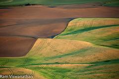 Design Patterns in Wheat fields2 (ramviswanathan) Tags: landscape photos wheatfields palouse steptoe