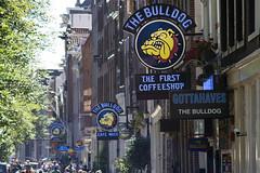 First, second and third (Arne Kuilman) Tags: street netherlands amsterdam zoom details nederland first coffeeshop olympus tele mf redlightdistrict manualfocus straat dewallen em10 thebulldog 270mm sigma135mmf28 cafemack thefirstcoffeeshop sigmatelemaxys