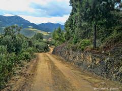 Carretera Floresta - Belén. Vereda de las Puentes (@omarsilva_photos) Tags: naturaleza mountain green américa colombia ngc paisaje floresta carreteras boyacá suramérica omarsilvaphotos
