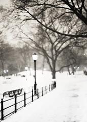winterland! (alphacenturia) Tags: macbook iphone 7 6s apple naked undress undressed snow monochrome flickrelite