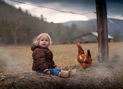 The Lookout (Sonya Adcock Photography) Tags: girl child kid photography childphotography light warm family painterly portrait poetry poetic story nikon nikond700 nikkor nikkor105mmdc childhood fineart fineartphotography art sonyaadcockphotography chicken rooster farm toddler storm brewing coat winter
