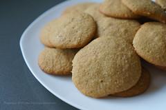Applesauce Spice Cookies (Ana Penelope) Tags: applesaucespicecookie cookie