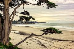 Carmel Beach on Christmas Day (jthight) Tags: nikond810 afzoom2470mmf28g carmel ocean on1pics carmelbay pacificocean december clouds sky carmelbythesea hdr california lightroom rocks unitedstates us