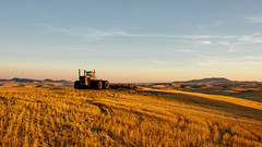 Working Land (John Westrock) Tags: landscape rural farmfield tractor garfield washington unitedstates us sunset canoneos5dmarkiii sigma35mmf14dghsmart wheat