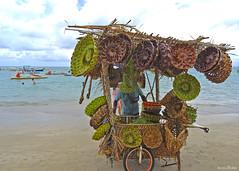 Artes com folhas de coqueiros (Lucia Cysneiros) Tags: praia portodegalinhas pernambuco brasil artesanato