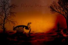 S.O.S (Mauricio Silerio) Tags: phone dark surreal surrealism dreamscape crow nightmare dream dreaming sunset burned ruins telephone calling