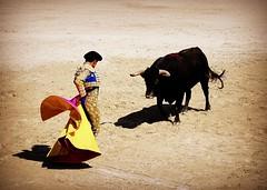 capeando (aficion2012) Tags: arles france francia novillada feria riz septembre 2016 corrida toros toreaux bull bullfight flight leo valadez blohorn jalabert novillo novillos capote capa capear