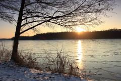 IMG_3241 (wozischra) Tags: berlin heiligensee spaziergang baumberge höchster baum altheiligensee