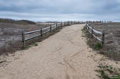 Path to the cold and windy Atlantic beach (kucheryavchik) Tags: america atlantic capemay east eastcoast nj newjersey usa coast ocean roadtrip roadtrip2016 oceancity unitedstates us