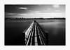Bridging the Gap (bnishimoto) Tags: fuji fujifilm myfujifilm xpro2 18135mm photoessay shorelinebaytrail charlestonslough mountainview bayarea landscape bw acros longexposure