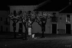 Noche de reyes. (jcof) Tags: arbol calle doors fuente higueradelasierra luces mujeres navidad plaza pueblo puertas sierra sierradehuelva street tree ventanas windows women
