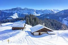 DSC01893.jpg (D.Goodson) Tags: didier bonfils goodson côte 2000 planey beaufortain ski rando