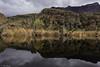 Winter at Ayer Lake (Astrónomo) Tags: pond boyce thompson arizona winter arboretum superior reflection lake ayer