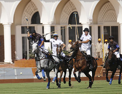 UAE Polo and Desert Palm