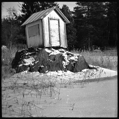 Sauna by Foide - camera Lomography Diana F+ Love Letters 42x42, lens Diana+ 75mm Premium Glass Lens, film Lomography Earl Grey 100 (120), developed in Rollei Supergrain 1:12 for 7 min