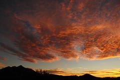 Sunrise 6 4 15 #21 fb (Az Skies Photography) Tags: morning red arizona sky orange cloud sun black june rio yellow skyline clouds sunrise canon skyscape eos rebel gold dawn golden 4 salmon az rico safe rise daybreak 2015 6415 arizonasky riorico rioricoaz arizonasunrise t2i arizonaskyline canoneosrebelt2i eosrebelt2i 642015 arizonaskyscape june42015