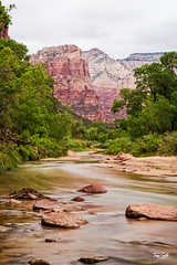 20150523 Emerald Pools (Zion)-9 (Tony Castle) Tags: park nature forest utah us waterfall unitedstates hurricane national pools zion znp emeral