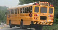 Brewster CSD #290 (ThoseGuys119) Tags: schoolbus icce icre brewsterny icfe bluebirdallamerican leonardbussales brewstercsd