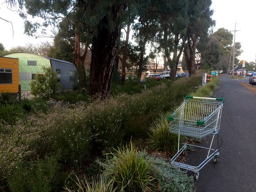 Not many miscreant trolleys in Monbulk