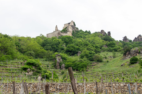 view of Ruine Dürnstein from the town