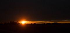 Open the World's Eye (geekknot) Tags: sun sunrise field morning 365