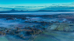 Foggy morning scape (Masa_N) Tags: scenicrimregion winter fields australia mountains trees fog mist misty morning queensland allenview オーストラリア au