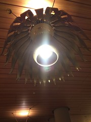 fab flower chandelier in Bombay Airport (olive witch) Tags: 2016 abeerhoque bombay chandelier dec16 december india indoors light night