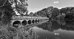 The Bridge. (Cycling Saint) Tags: sthelens carrmilldam nikond750nikkor2470f28 landscapes merseyside monochrome blackandwhite