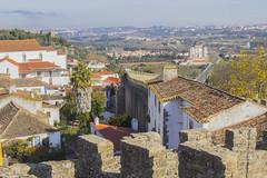 _MG_9229 (Arthur Pontes) Tags: óbidos medieval laranjas orange age old history mar vila
