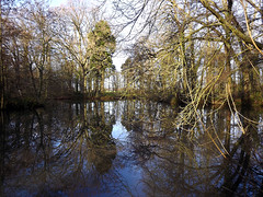 Reflections (captain_flynn23) Tags: coombeabbey warwickshire lake trees reflections waterscape sky winter nature