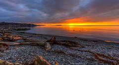 Ross Bay Sunrise (Paul Rioux) Tags: bc victoria rossbay waterfront beach seashore seascape sunrise morning daybreak dawn outdoor sea ocean water clouds logs driftwood gravel