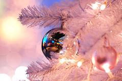 Christmas Decration(クリスマスの飾り) (daigo harada(原田 大吾)) Tags: christmas decoration クリスマス 飾り ピンク pink