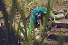 Undine (tehhishek) Tags: mermaid ooak monster high irvine custom mx mattel water model blue river bathing
