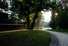 Parco Sempione (Choo_Choo_train) Tags: park fuji xt1 milano parco sempione morning tumblr italy sunrise sun light