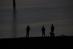 trois hommes et leur chien (Jeannette201) Tags: soleil bateaux coucher lanildut mer quoi reflets