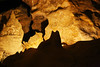 The cat (Austrinus) Tags: colossal cave cat gato arizona