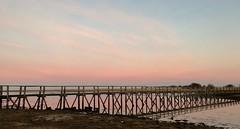 This morning..xx.  (Explore 17/02/2017) (shona.2) Tags: iphone7plus naturereserve aberladybay water bridge scotland fog misty sunrise