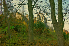 The rock landscape (Hejma (+/- 5200 faves and 1,6 milion views)) Tags: historical watchtower soldering jura tree scrub grassland rock fall fence autumn colors chiaroscuro