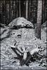 Stubbe och sten 4 (Jonas Thomén) Tags: stubbe stump sten rock stone forest skog träd trees snow snö winter vinter moonlight månsken 8min longexposure longexponering natt night lingon lingonris januari january