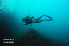 Biosar Cap (YellowSingle 单黄) Tags: biosar underwater scuba diving tech ocean atlantic plongée fontarrabie spain gopro cap