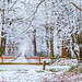 Kindness+is+like+snow%2C+it+beautifies+everything+it+covers