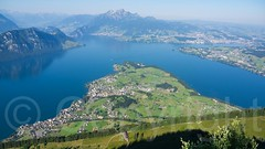 Weggis-Hertenstein on Lake Lucerne, Central Switzerland (jag9889) Tags: mountain lake schweiz switzerland europe suisse suiza outdoor swiss luzern aerialview alpine pilatus svizzera lucerne ch vierwaldstttersee lakelucerne weggis rigi 2015 brgenstock buergenstock innerschweiz hertenstein zentralschweiz centralswitzerland mountrigi kantonluzern cantonlucerne brgenberg suizra queenofthemountains kniginderberge jag9889 20150701