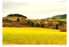 Paysage de Haute-Loire (BerColly) Tags: france auvergne hauteloire champ field jaune yellow village automne autumn bercolly google flickr