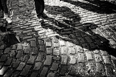(...) (ángel mateo) Tags: ángelmartínmateo ángelmateo irlanda dublín dublin ireland eire erin irish ♣ calle urbano sombra empedrado pasos caminando pareja luz urban street shadow stoned steps walking couple light