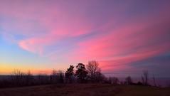 Blush sky (J. Roseen) Tags: morning morgon himmel dawn gryning morgonhimmel morningsky goodmorning godmorgon förväntan anticipation lumia950 pureview sky outdoor cloud moln moring blush morgonrodnad